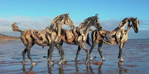 Lo Stracquo ® – l'arte che viene dal mare