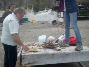 Raccolta del materiale sulla spiaggia di Frontone.3