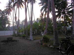 Garden Sri-Lanka. Alba