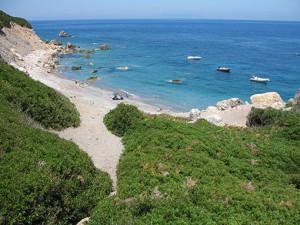 spiaggia di zannone cercola